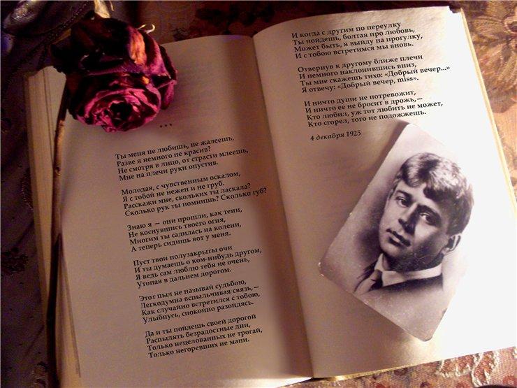 анализ стихотворения мы любим тех кто нас не любит